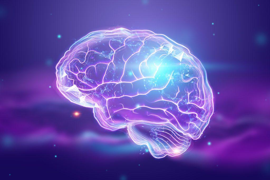 image visualizing spark within brain anatomy